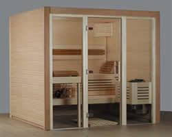 Elementsauna Design dunkel